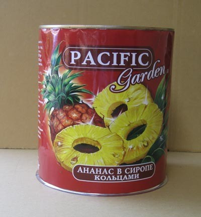 Canned Pieces Pineapples In Light Syrup A10