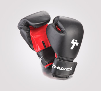 Training Gloves (Leather)