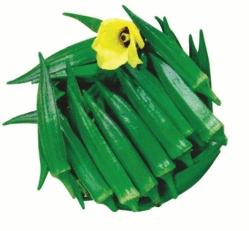 Bhindi Pramukh Vegetable Seed
