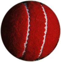 Cricket Tennis Sports Ball
