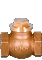Bronze Horizontal Check Valve in  Raipur