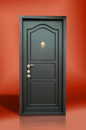 Classic Steel Doors in Thiruvankulam & Classic Steel Doors in Thiruvankulam Kochi - Manufacturer pezcame.com