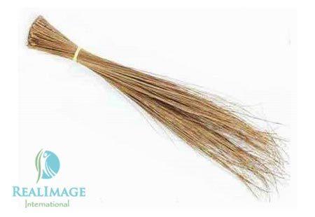 Coconut Broom Stick In Theni Tamil Nadu Real Image