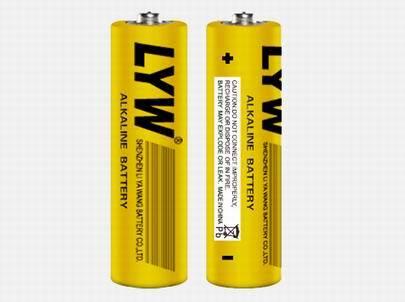 LR6 1.5V AA Alkaline Battery