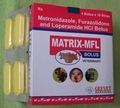 Metronidazole Furozolidone Loperamide Bolus