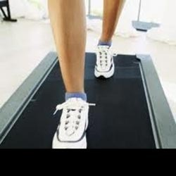Treadmill Belts