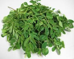 Moringa Leaves in   Satchiyapuram