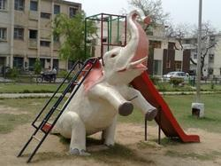 Elephant Slide in  New Area