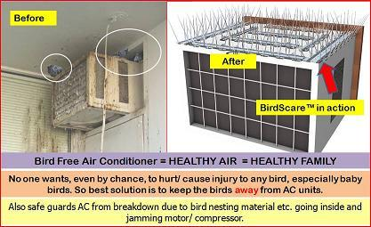Bird Scare Spikes AC Pack in  Raja Garden