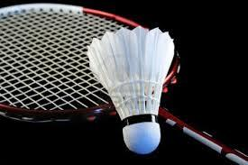 Badminton Rackets in  New Area