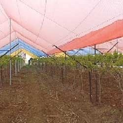 Agricultural Shade Netting in   Pardi
