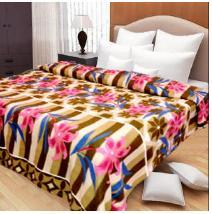 Double Bed Ac Blanket in  25-Sector