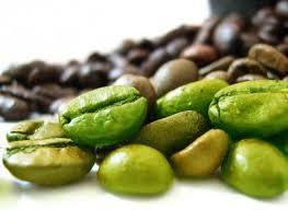 Green Coffee Bean Extract in  Annekal Taluk