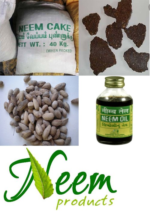 Neem Products in   Iyer Bungalow