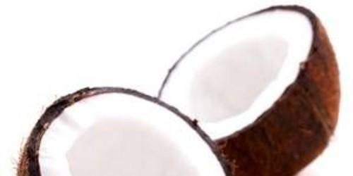 Fresh Coconut Milk Powder