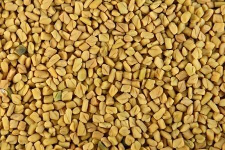 Agri Fenugreek Seed