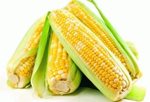 Yellow Maize Seeds in   Tahsildar Nagar
