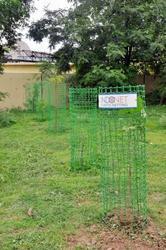 Tree Guard Net in  Waghodia Gidc  (Vdr)