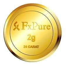 2G Hallmark Gold Coin (24 CARAT)