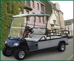 6 Seater Cargo Golf Cart