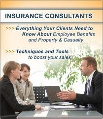 Insurance Consultancy Services