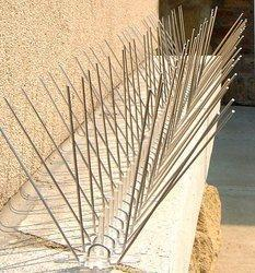 Affordable Stainless Steel Bird Spikes