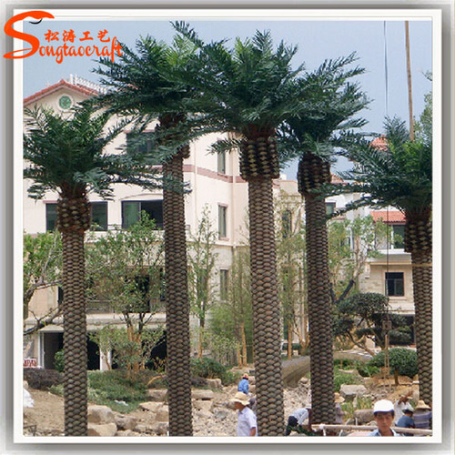 Outdoor Decorative Palm Trees