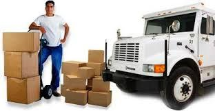 Domestic Packer & Mover Service