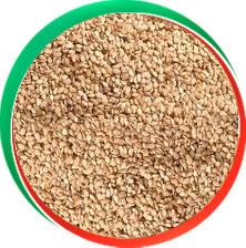 Roasted Sesame Seeds in  Navrangpura