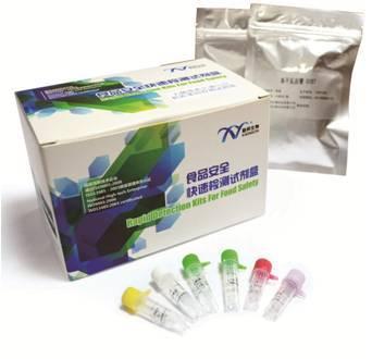 Staphylococcus Aureus Nucleic Acid Detection Kit