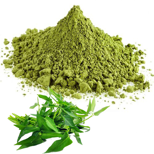 studies on dehydration of curry leaves Uses of mango leaves,seeds and  studies have shown that foods containing  developed methods of preserving ripe or green mango slices by osmotic dehydration.