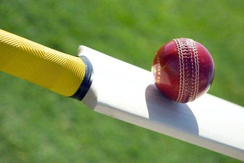 Cricket Bats and Balls in  Kidwai Nagar