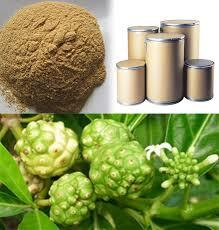 Noni Extract And Powder