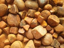 Buffalo - Ox Gallbladder Stone