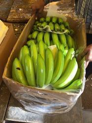 Green Cavendish Fresh Banana in  Pune-Solapur Road
