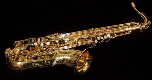 Selmer (Paris) Professional Tenor 54S Saxophone