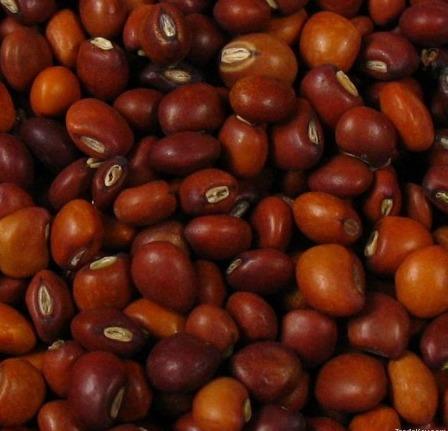 Sudan Red Pigeon Peas