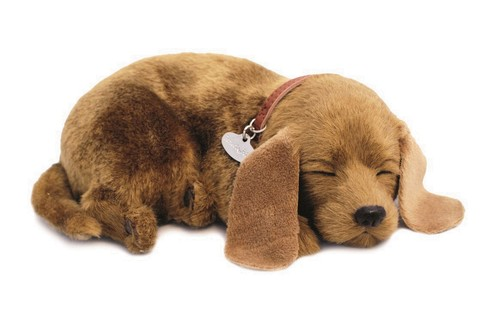 Mutt Dog Soft Toy in  Pitampura