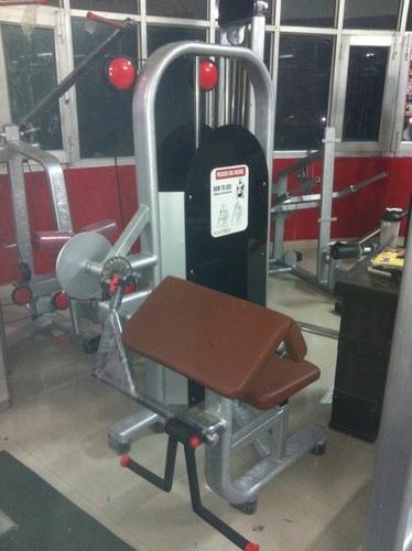 Preacher Curl Gym in  New Area