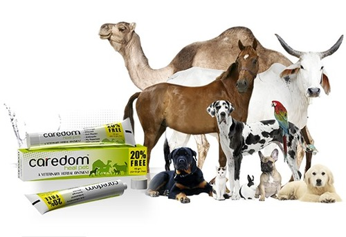 Veterinary Herbal Ointment