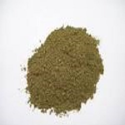 Natural Mint Powder