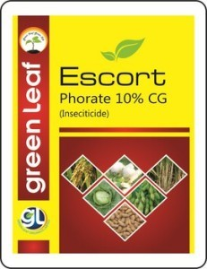 Phorate 10% CG Insecticide