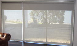 Blackout And Sunscreen Roller Blind in  New Area