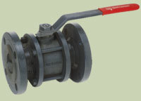 C.I. Two Piece Flanged End Valve in  Dariyapur