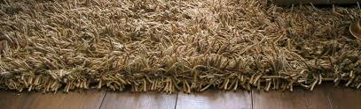Unique Carpets in  Cotton Pet