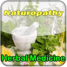 Herbal Alkalizer Syrup in   Khanna Nagar