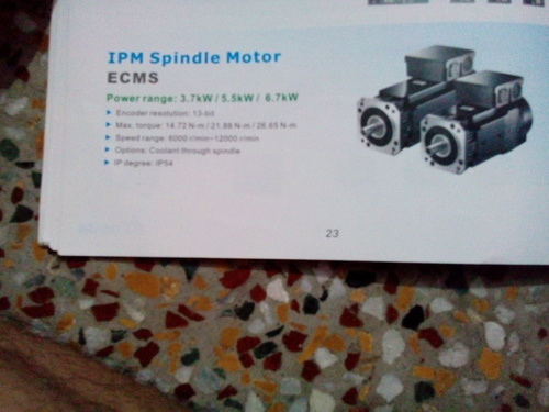 IPM Spindle Motor in  Naraina