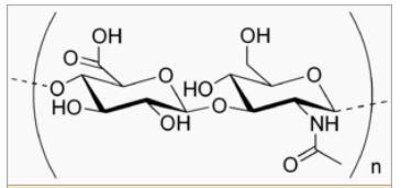 Food Grade Sodium Hyaluronate