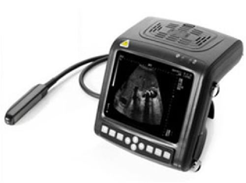 Veterinary Portable Wrist Ultrasound Scanner in  Sarvodaya Enclave