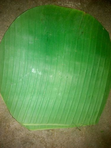 Round Banana Leaf in  Kanyakumari Dist.